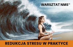 Redukcja stresu w praktyce - Warsztat NMS