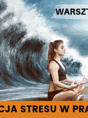Redukcja stresu w praktyce – Warsztat NMS™