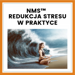 Redukcja stresu w praktyce – Warsztat NMS